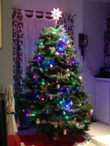 Here's our Christmas Tree!
