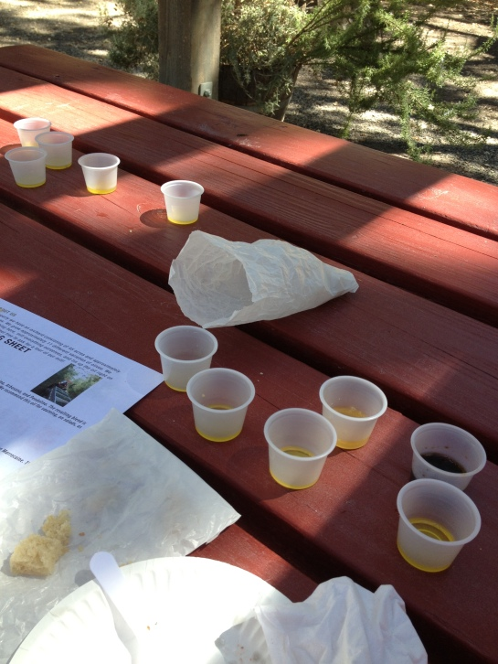 This is what olive oil tasting can look like after 2 wine tasting trips.  Messy!